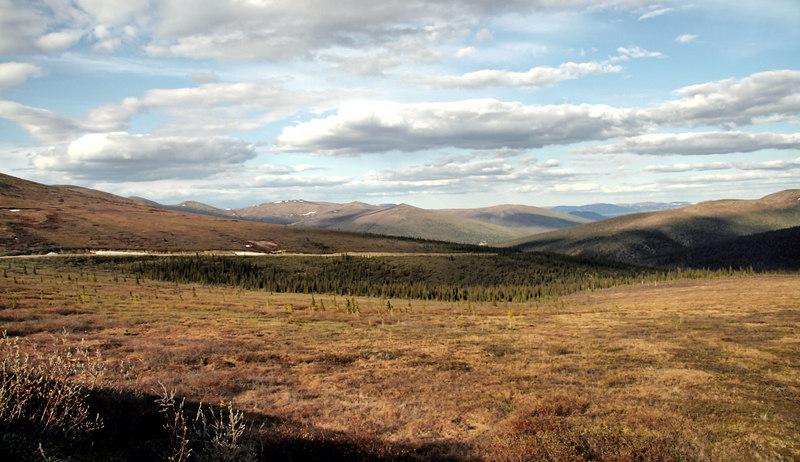 Steese Highway near summit