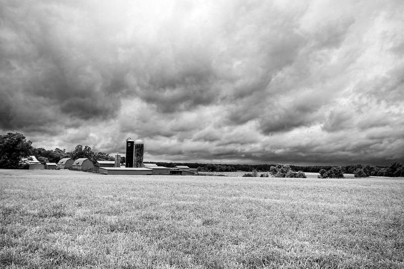Gilmanor Farm (B&W)