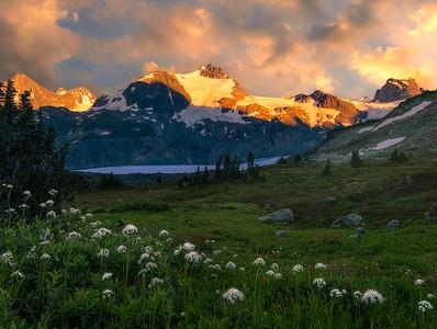 Glacial Meadows