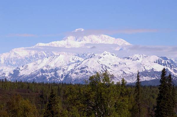 Denali (Mount McKinley) photogaphed in late spring from a scenic overlook in side Denali State Park just north of Talkeetna, Alaska.