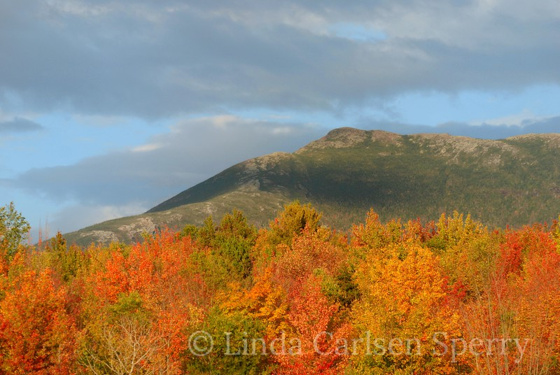 Sunset Ridge in Fall