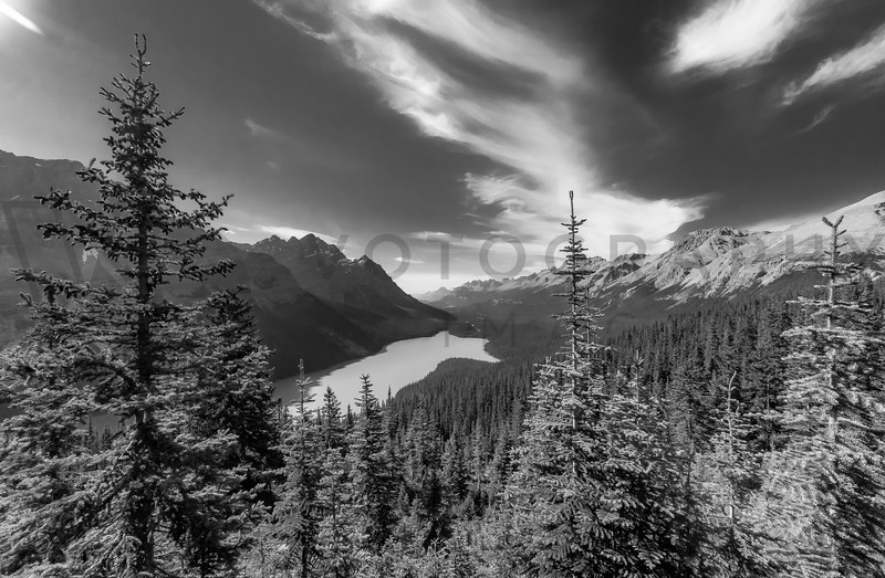 Turquoise in Black and White, Peyto Lake, Alberta, Canada