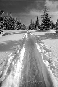 Snowshoe track up Potato Hill