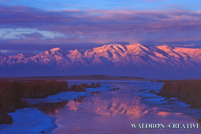 Wasatch Range from the marsh, Bear River Valley, Box Elder County Utah.