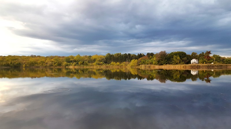 Owens Pond