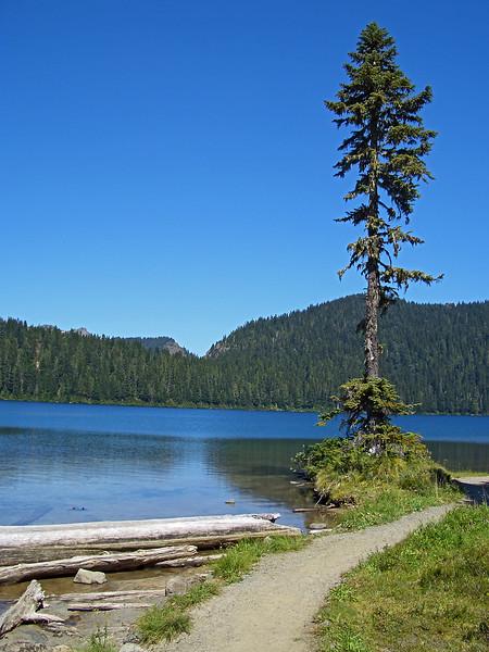 Mowich_Lake05009a.jpg