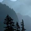 954  G Trees and Mt  Shuksan V