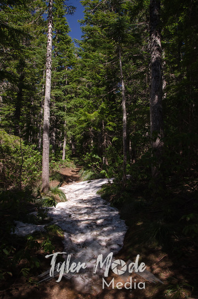 24  G Lost Lake Butte Trail Snow V