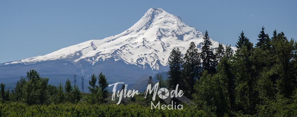 Mt. Hood 6.13