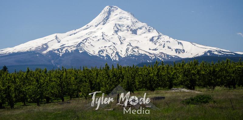 2  G Mt  Hood
