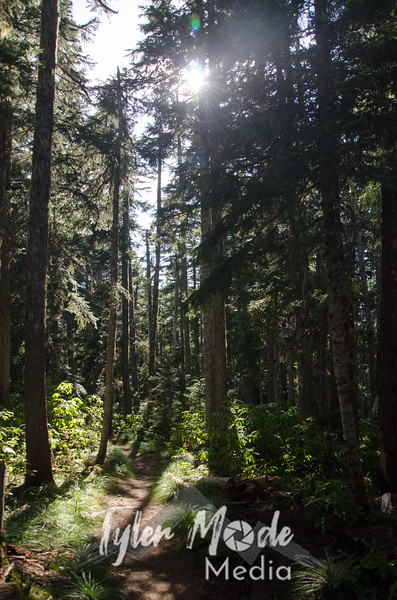53  G Lost Lake Butte Trail V