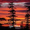 80  G July Sunset