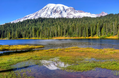 Reflection lake, Mt. Rainier.