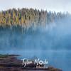 163  G Reflection Lake Trees and Fog
