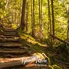 13  G Trail Up Sun