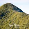 36  GTum Tum Peak Close