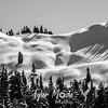 223  G Snowy Range BW