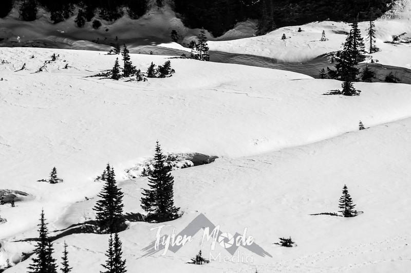 210  G Snowy Paradise Valley BW