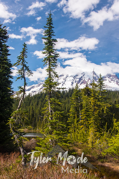 61  G Rainier and Reflection Lakes V