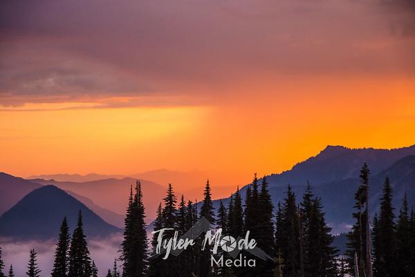 Mt. Rainier 5.15
