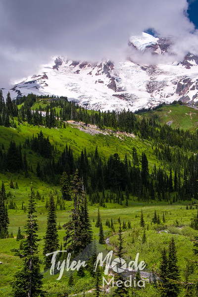 25  G Rainier and Paradise Valley
