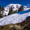 173  G Snowbank and Rainier
