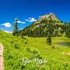 2682  G Trail Wildflowers Tipsoo and Yakima Peak
