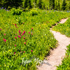 2759  G Wildflowers Trail