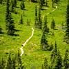 2717  G Trail Near Tipsoo V