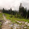 700  G Trail Down