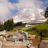 721  G Trail and Rainier