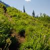178  G Trail and Cloud V