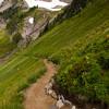 779  G Golden Gate Trail V