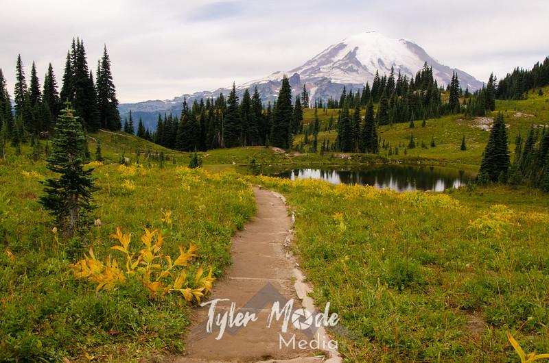 205  G Rainier Tarn and Trail