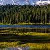 22  G Rainier and Reflection Lakes