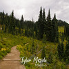 214  G Trail East