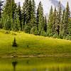 132  G Rainier and Tipsoo Lake