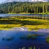 21  G Rainier and Reflection Lakes
