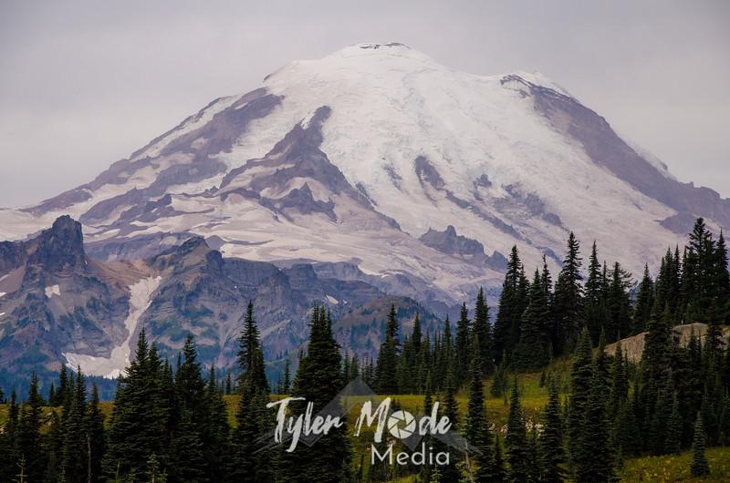 202  G Rainier