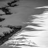 23  G Nisqually Snow Shadows BW