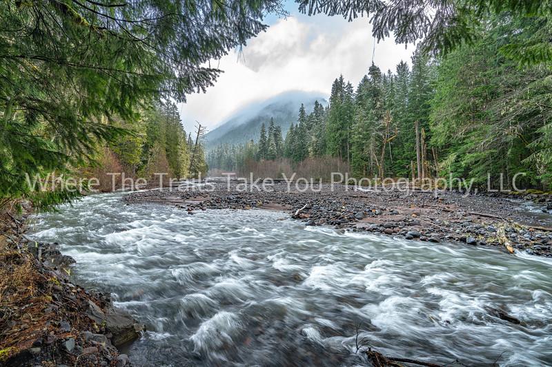 Tahoma Creek Scenery 3