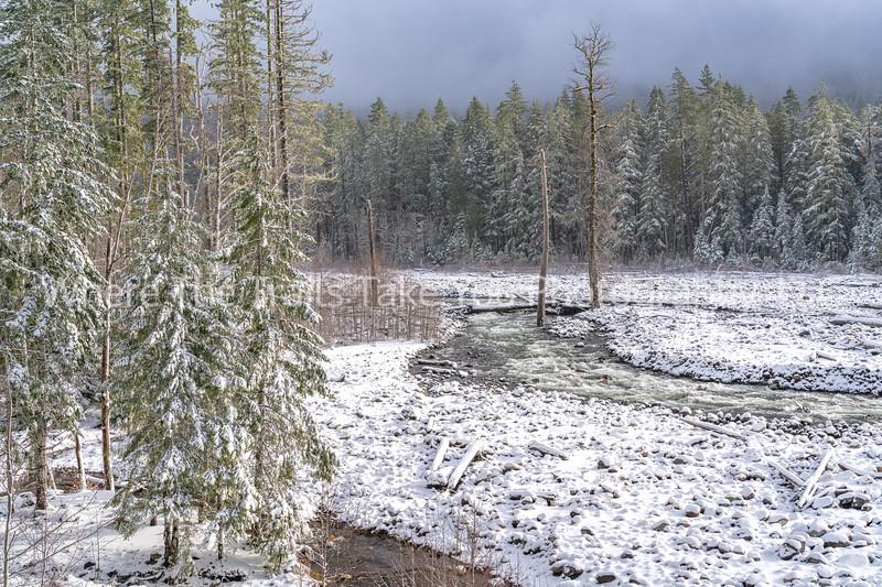 Nisqually River Winter Landscape