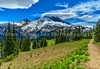 The View From Sourdough Ridge Trail