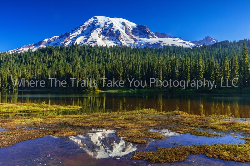 114.  A Reflection Lake Reflection