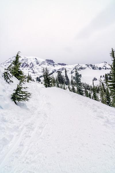 Snow Trail To The Mountain