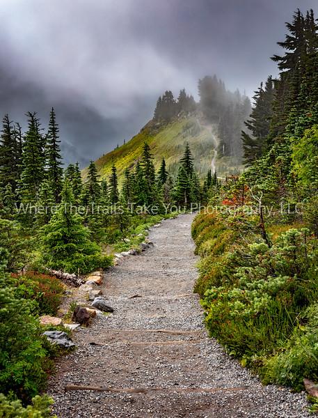 The Alta Vista Trail