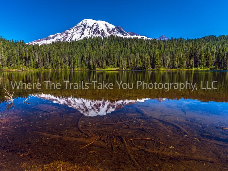 116.  The View At Reflection Lake