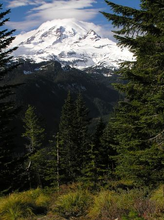 Mt. Rainier Natl Park