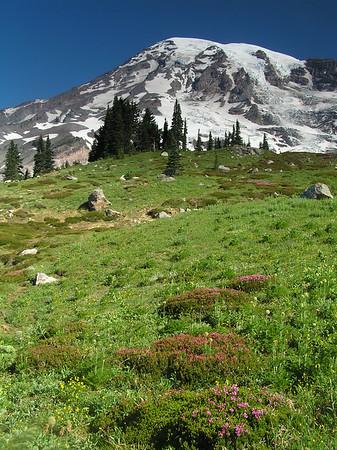 Skyline Trail 072006