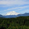 We saw this view of the SE side of Rainier as we were leaving the park. Gale stopped the car, I got out to take a photo and nearly tumbled down the mountainside, we were so close to the edge! I'm going to use a tether on the next trip.